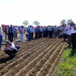 Practical training – Innovative farming systems using new generation seedbed preparation