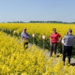"Invitation to International Day of Rapeseed ""EURORZEPAK 2019"" in Kujawsko-Pomorski Agricultural Advisory Centre in Minikowo"